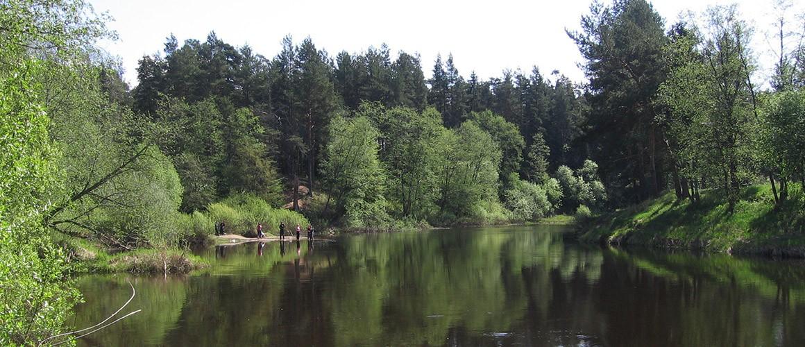 река-слайдер