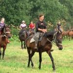 05. Серебрянский конный маршрут