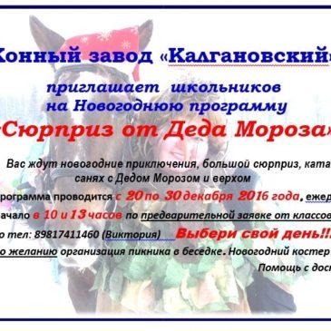 конный завод «Калгановский»
