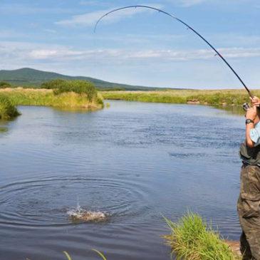День охотника и рыболова — 9 сентября 2017 года