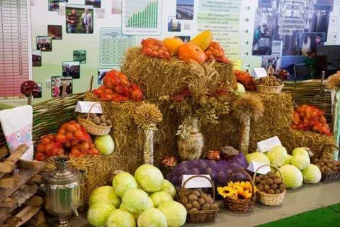 Осенняя ярмарка-продажа сельскохозяйственной продукции