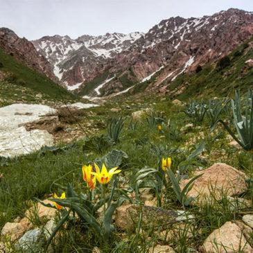 Узбекистан: национальный колорит, природа и история