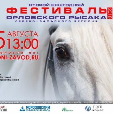 Второй Фестиваль Орловского Рысака Северо-Западного региона (д. Калгановка)