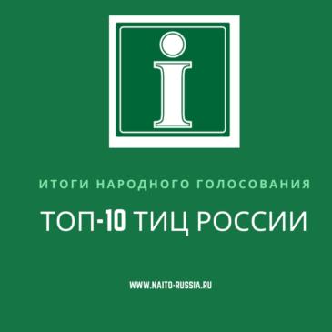 Подведены итоги народного онлайн голосования за лучший туристско-информационный центр России